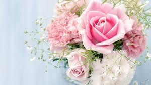 صور زهور وورود