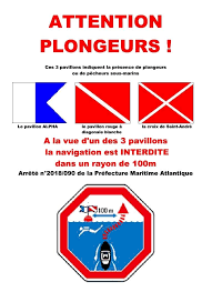 OCPR Club de plongée de La Bernerie en Retz - Beiträge | Facebook