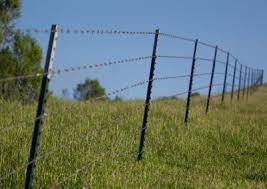 Fence Spurx Com