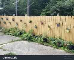 Flower Pots On Fence The Arts Stock Image 1459892126