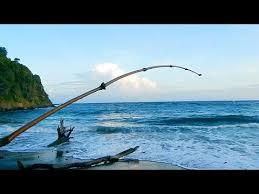 homemade fishing poles you