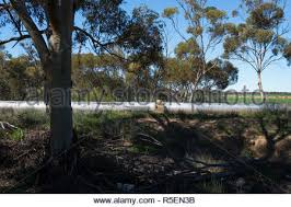 A Section Of Pipe Of The Goldfields Water Supply Scheme The Pipe Runs Mostly Above Ground And Supplies Kalgoorlie With Water Stock Photo Alamy