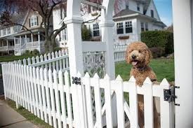 White Picket Fences Gate Images Stock Photos Page 1 Masterfile