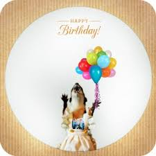 happy birthday to you here is your