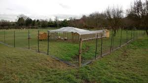 Chicken Keeper Recommends One Thing To Novice Keepers Install Electric Fencing Farminguk News