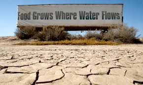 Image result for statistics on water wastage in the home in Australia