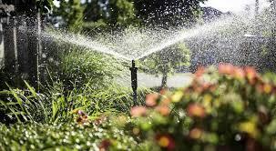 5 uses for a solar powered fountain pump