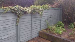 Garden Fence Paint 4356345 Garden Fence Paint And How To Apply It Garden Design Garden Design Garden Fence Paint