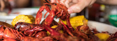 Guide to Crawfish – New Orleans, LA
