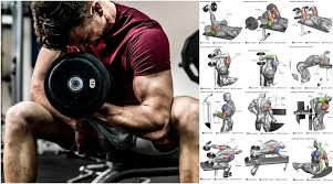want to build size strength or