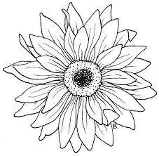 Gerberas Flores Dibujos Buscar Con Google Dibujos Como