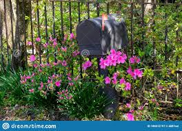 A Mailbox With Flowers Stock Image Image Of Bars Fence 186612197