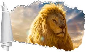 Lion 3d Torn Paper Hole Ripped Effect Decal Wall Sticker Decalz Co
