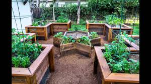garden ideas raised vegetable garden