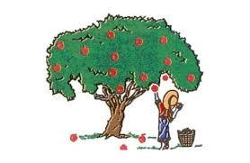 Το δέντρο που έδινε. Μια υπέροχη ιστορία! - Εναλλακτική Δράση