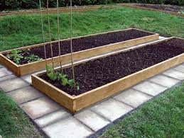 raised bed gardening ideas money the