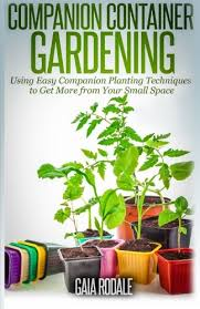 companion container gardening using