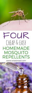 and easy homemade mosquito repellents