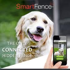 Atlanta Dogwatch Hidden Fence Reviews Alpharetta Ga Angie S List
