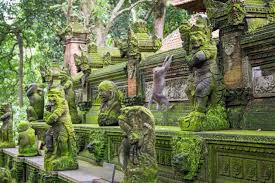 impressive indonesia adventure tour