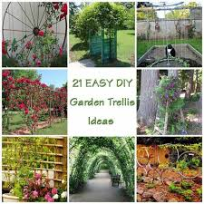 easy diy garden trellis ideas