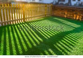 shadows wooden picket fence front yard