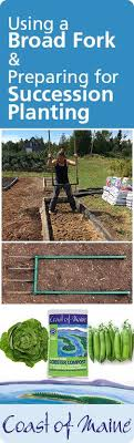 Felicia Newman instructs on how to use a broadfork and topdress and prepare  a raised bed for succession planting. She … | Succession planting, Compost,  Fall plants