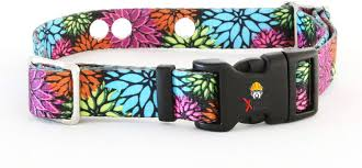 Amazon Com Flower Days Medium Replacement Dog Collar Strap Compatible With Invisible Fence Collars As Well As Many Other Brands Of Electric Dog Fence Collars Pet Supplies