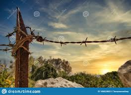 Barbed Wire And Rusty Metal Fence Post In A Field Stock Image Image Of Field Background 180823883