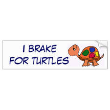 I Brake For Turtles Bumper Stickers Decals Car Magnets Zazzle