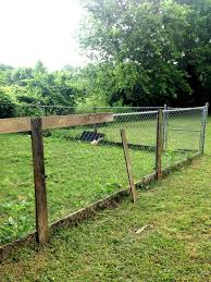 Upgrading A Chain Link Fence Fence Landscaping Backyard Fences Backyard Landscaping