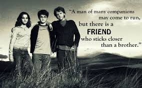 harry potter quotes we need fun