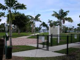 Want A Dog Park In Your Town Here S How To Plan And Design It