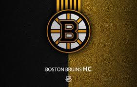 sport logo nhl hockey boston bruins