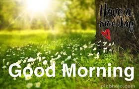 120 good morning hd pic for whatsapp