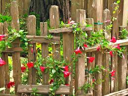 Carmel Cottage Open House Backyard Garden Design Rustic Fence Rustic Gardens