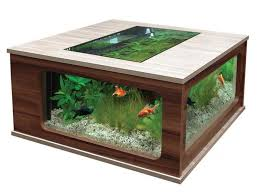 how to enhance your ordinary fish tank