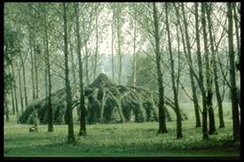 Living Willow Architecture Make