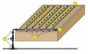 netafim techline ez for raised bed