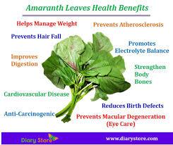 amaranth leaves health benefits