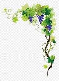 g vine border png transpa png