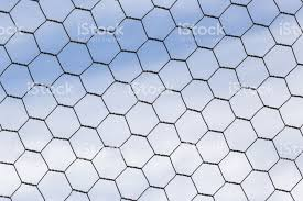 Chicken Wire Fence Makes A Pattern Against The Blue Sky Stock Photo Download Image Now Istock