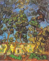 vincent van gogh in arles st remy and