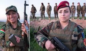 defiant kurdish solr s