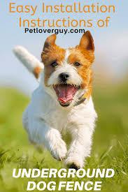 Easy Installation Instructions Of Underground Dog Fence Pet Lover Guy