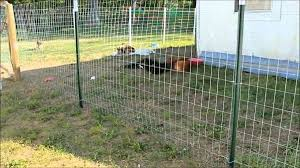 Cheap Privacy Fencing Ideas Cheap Dog Fence Ideas Cheap Fencing Options Cheap Fence Ideas For Backyar Temporary Fence For Dogs Dog Fence Cheap Diy Dog Fence