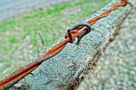 The 4 Best Barbed Wire Cutters Reviews 2020