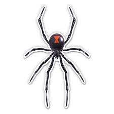 Black Widow Spider 12 Vinyl Sticker Waterproof Decal Walmart Com Walmart Com