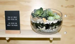 diy succulent terrarium inspiration