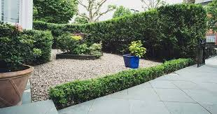 woah how to design your front garden